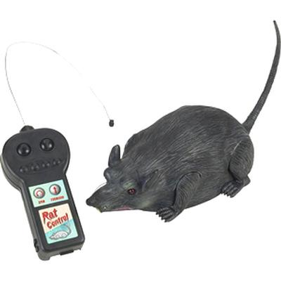 Click to get Remote Controlled Rat