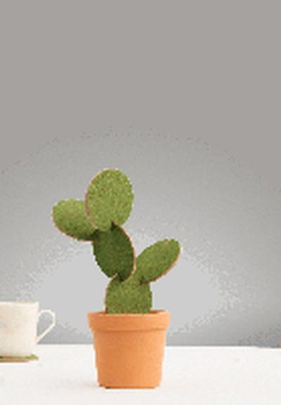 Click to get Cactus Coasters